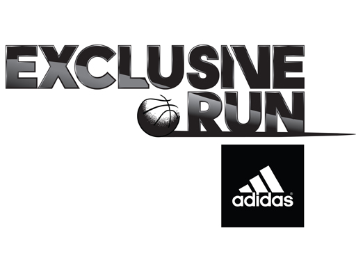 exclusive_run_covers_guide